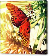 Butterfly II Canvas Print