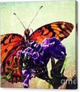 Butterfly Kissed Canvas Print