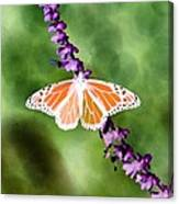 Butterfly - Monarch - Photopower 319 Canvas Print