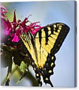 Butterfly Out Of The Blue - Blue Butterfly Art Canvas Print