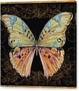 Butterfly Treasure-sofia Canvas Print