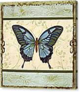 Butterfly Trio-3 Canvas Print