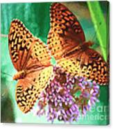 Butterfly Twins Canvas Print
