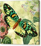 Butterfly Visions-a Canvas Print