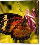 Butterfly With Flower Canvas Print