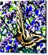Butterfly With Purple Flowers 4 Canvas Print