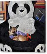 Button And The Panda Bear Canvas Print