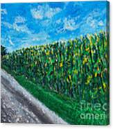 By An Indiana Cornfield The Road Home Canvas Print