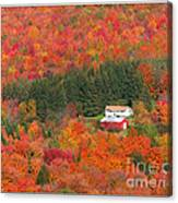 By Autumn Surrounded Canvas Print