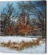 By Rattlesnake Creek Canvas Print