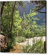 By The Emerald Pools - Zion Np Canvas Print