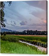 By The Stream Canvas Print