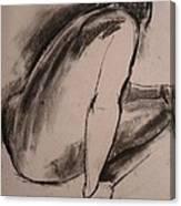 C04. Resting Canvas Print