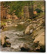 Cabin By The Creek Canvas Print