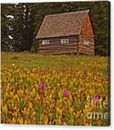 Cabin On Grand Mesa Canvas Print