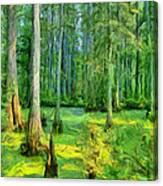 Cache River Swamp Canvas Print