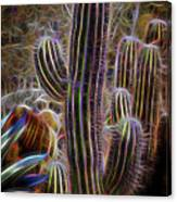 Cacti Lights Canvas Print