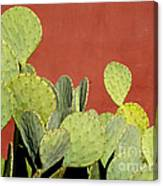 Cactus Against Orange Wall Canvas Print