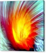 Cactus Fire 2 Canvas Print