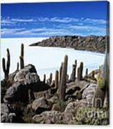 Cactus Forest And Salar De Uyuni Canvas Print