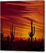 Cactus Glow Canvas Print