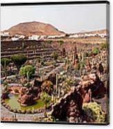 Cactus Paradise Canvas Print