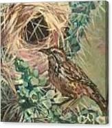 Cactus Ren Canvas Print