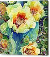Cactus Splendor II Canvas Print
