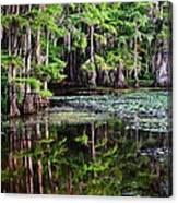 Caddo Dawn Canvas Print