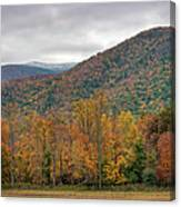 Cades Cove, Great Smoky Mountains Canvas Print