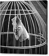 Cage Canvas Print