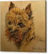 Cairn Terrier Dog Canvas Print