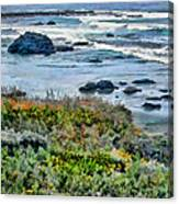 California Central Coast Near San Simeon Canvas Print
