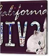 California License Plate Canvas Print