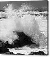 California Pacific Coast Canvas Print