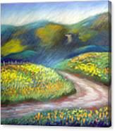 California Poppy Path Canvas Print