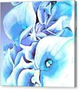 Calla Lilly So Soft Lilac And Blue Canvas Print