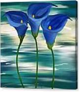 Calla Trio- Calla Lily Paintings Canvas Print