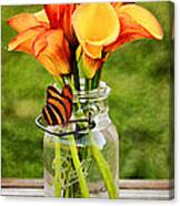 Calla's And The Butterfly Canvas Print