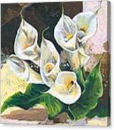 Callas Canvas Print