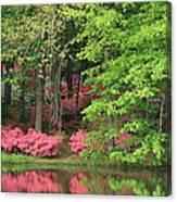 Callaway Gardens 1 Canvas Print