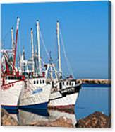 Calm Harbor Canvas Print