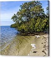 Calm Waters On The Gulf Canvas Print