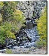 Calming Stream Canvas Print