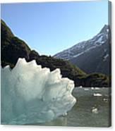 Calved Ice Alaska Canvas Print