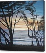 Cambria Cypress Trees At Sunset Canvas Print