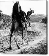 Camel Rider Canvas Print