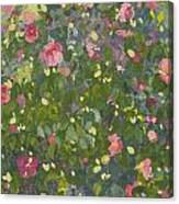 Camellia In Flower Canvas Print