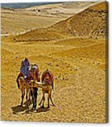 Camels Nuzzling On The Giza Plateau-egypt  Canvas Print