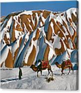 Camels On The Snow Canvas Print